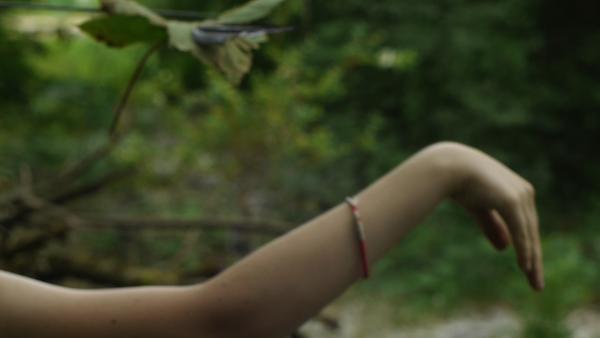 NAÏADE la femme de l'eau-projet d'installation filmique